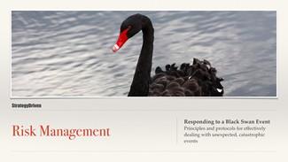Preparing for the Black Swan Video Training Series