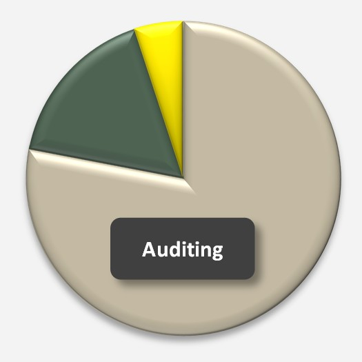 Large Firm Internal Audit Co-sourcing