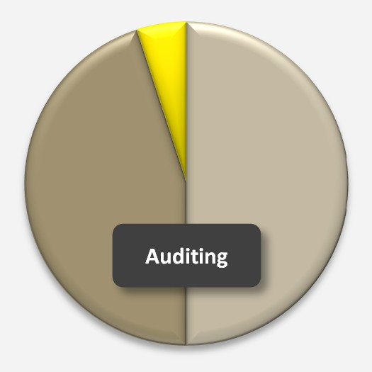 StrategyDriven Advisory Services Internal Audit Co-sourcing