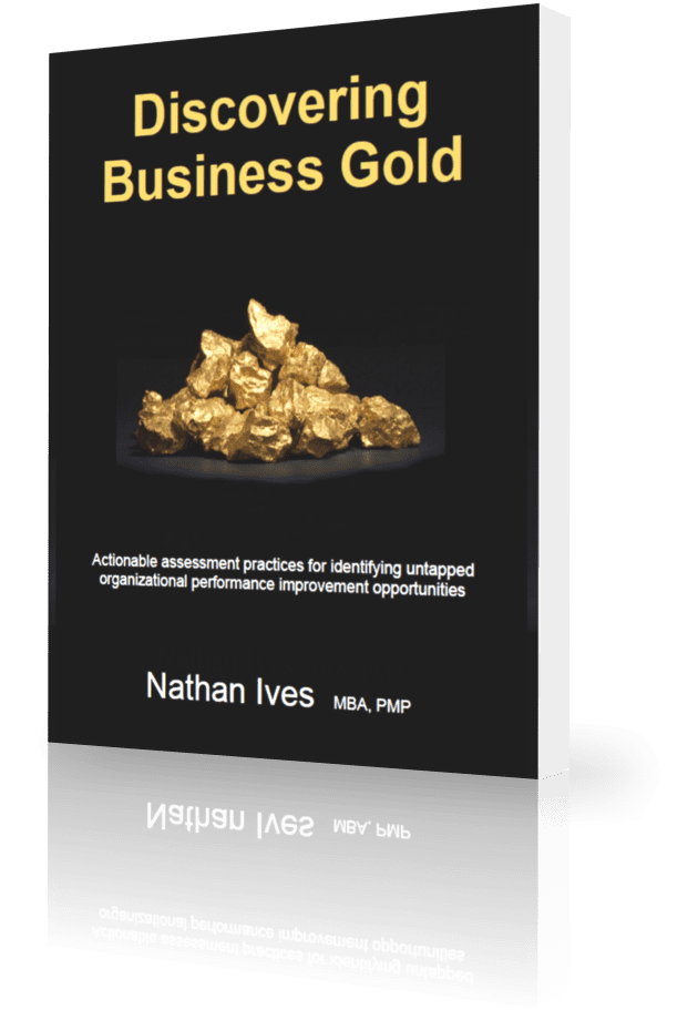 StrategyDriven Business Performance Assessment Program Book | Discovering Business Gold | Nathan Ives
