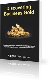 StrategyDriven Book | Discovering Business Gold