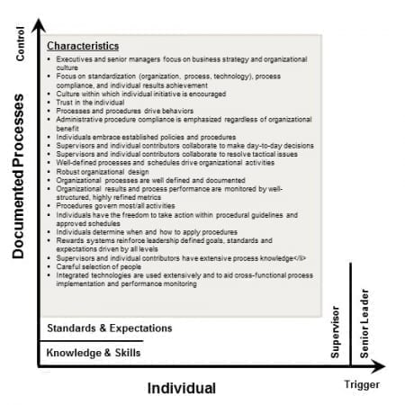 StrategyDriven Corporate Cultures Article | Corporate Cultures - Individual Initiated, Documented Processes Controlled Environment