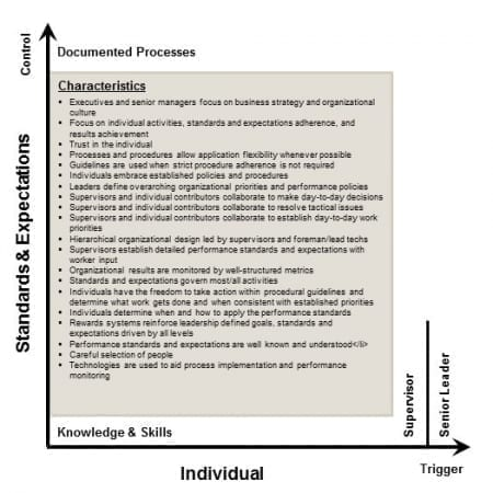 StrategyDriven Corporate Cultures Article | Corporate Cultures - Individual Initiated, Rules and Standards Controlled Environment
