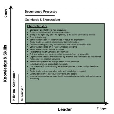 StrategyDriven Corporate Cultures | Corporate Cultures - Leader Initiated, Knowledge and Skills Controlled Environment
