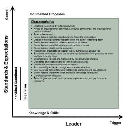 StrategyDriven Corporate Cultures Article | Corporate Cultures - Leader Initiated, Rules and Standards Controlled Environment