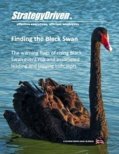 StrategyDriven Risk Management Whitepaper | Finding the Black Swan