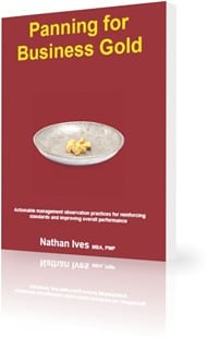StrategyDriven Book | Panning for Business Gold