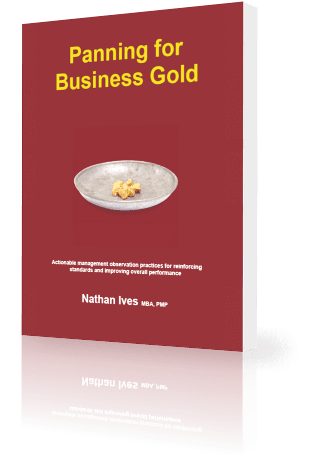 StrategyDriven Management Observation Program Book | Panning for Business Gold | Nathan Ives