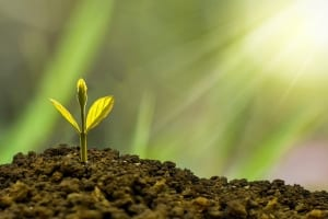 StrategyDriven Managing Your Business Article |Green Business|Are Consumers Putting Pressure on Businesses to Go Green