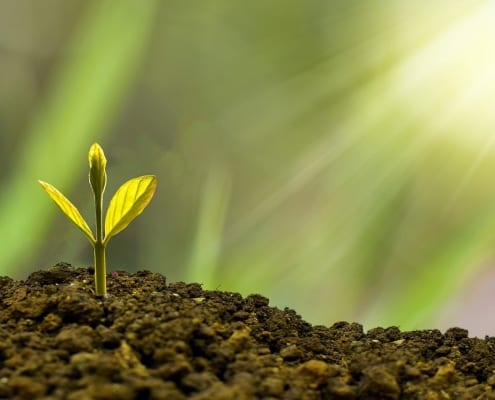 StrategyDriven Managing Your Business Article  Green Business Are Consumers Putting Pressure on Businesses to Go Green