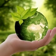 StrategyDriven Managing Your Business Article |Sustainability|Should Your Business Be Thinking About Making Sustainable Choices?