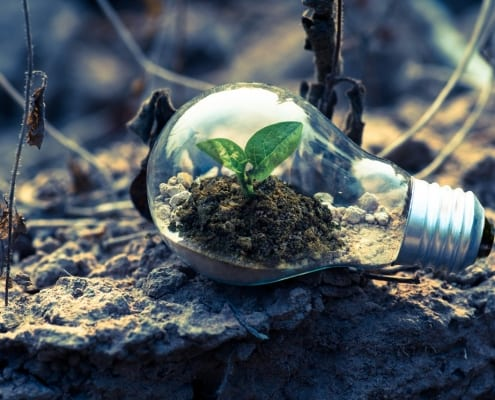 StrategyDriven Strategic Planning Article | Growth Mindset Should Be a Part of Your Business Strategy