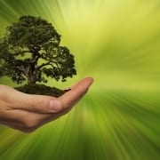 StrategyDriven Managing Your Business Article  Green Business Why Its Time To Turn Your Business Green