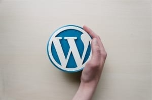 StrategyDriven Online Marketing and Website Development Article |WordPress Theme|Should a Custom WordPress Web Design Be Important to Your Business?